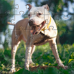 Download Pitbull Dogs Jigsaw Puzzles 🧩🐕🧩🐶🧩 APK